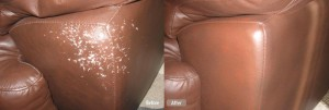 cat-scratches-leather-couch-repair
