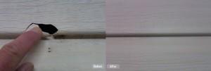 vinyl-siding-repair